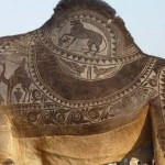 Camel Art – művészet teveszőrből