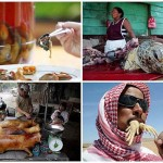 A legszélsőségesebb nemzeti ételek, a legkülönfélébb állatokból