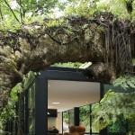 Ház az erdő mélyén