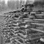 Régi idők fából készült hídja