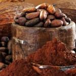 A kakaóbab termesztése és szüretelése Ghánában