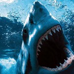 A Föld tíz leghalálosabb állata