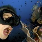 Egy fiatal búvár garnélarákokat használ fogai megtisztítására [Videó]