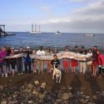 Óriási szíjhaltetemet találtak Kaliforniánál