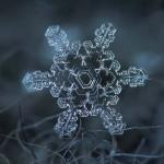 Lélegzetelállító képek hópelyhekről