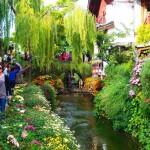 Lijiang festői óvárosa
