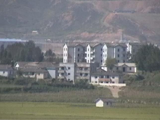 Kidzsongdong