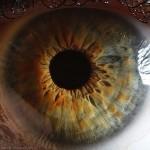 Az emberi szem közvetlen közelről
