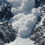Így élték túl a zergék a lavinát – elképesztő videó