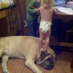 Kisgyerekek és türelmes négylábú kedvenceik