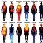 Érzelmi testtérképet készítettek finn kutatók