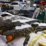 Egy kínai hipermarket különös termékkínálata