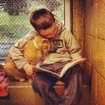 Gyerekek olvasnak fel a menhelyen élő macskáknak