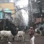 Elképesztő indiai utcaképek 2.