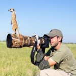 Így barátkozott Will Burrard-Lucas természetfotós az aranyos szurikátákkal