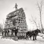 Szállítás lovakkal a XIX.században