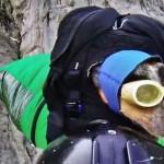 A világ első bázisugró kutyája [Videó]