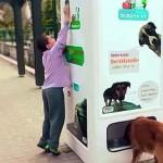 Egy különleges automata, ami ételhez juttatja az éhező kutyákat, műanyag palackokért cserébe