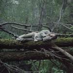 Photo: Élet a vadonban - a természetbe visszavonult emberek élete