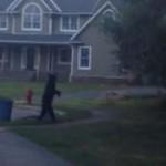 Két lábon járó medvét filmeztek le New Jersey külvárosában