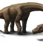 60 tonnás új dinoszauruszfajt fedeztek fel Argentínában
