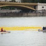 Photo: Sárga gumikacsák árasztották el a Dunát