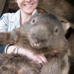 Photo: Patrik, a legidősebb vombat a világon
