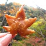Juharfalevél sütve – különleges japán csemege