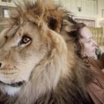 Évekig élt együtt egy oroszlánnal Melanie Griffith családja