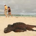 5+1 érdekesség a páratlan szépségű Galápagos-szigetekről
