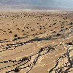 Több millió liter kőolaj ömlött ki egy izraeli természetvédelmi területen