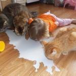 Photo: Kisgyerekek, akik a házi kedvencüket utánozzák