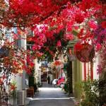 Photo: Színes, bájos hangulatú utcák