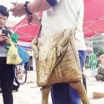 Hamisítatlan krokodilbőr táska