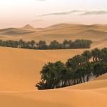 Az ország, amely homokot exportál Szaud-Arábiába