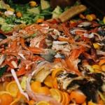 Ételhulladékból állítanak elő elektromos áramot Ausztráliában