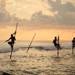 10 gyönyörű felvétel Srí Lankáról – fedezze fel az egzotikus szigetet!