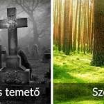 Megnyílt az ország legkülönlegesebb temetője