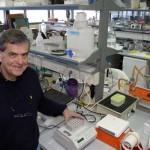 Rákos sejtekkel harcoló fehérjéket fedeztek fel izraeli tudósok