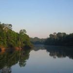 Világszerte alábecsülik a növényvédő szerek okozta folyószennyezést