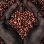 Méltányos kereskedelem – a szegény országok termelőinek támogatása