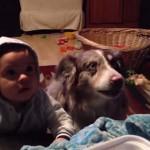 Photo: Egy anyuka a gyerekét tanította beszélni, de a kutya szólalt meg helyette