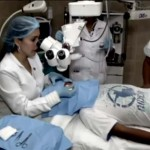 Bazsalikomlevelek segítségével távolítottak el egy 3 centis lárvát egy perui fiú szeméből