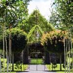 Élő fákból növesztett templomot egy új-zélandi férfi