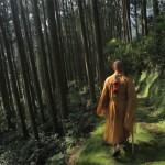 Varázslatos videó a természet és az ember kapcsolatáról