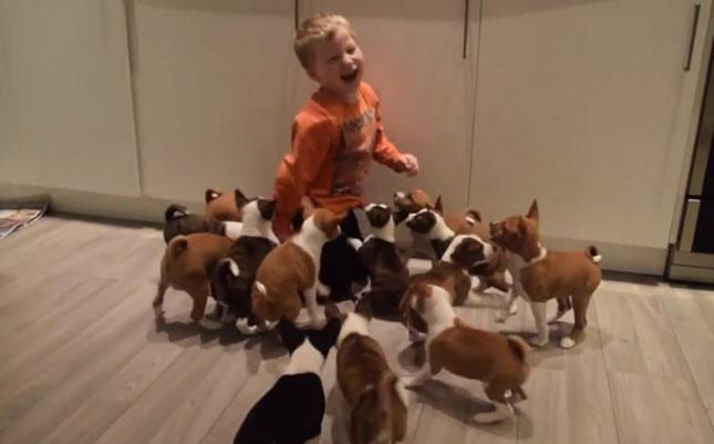 kutyaval-jatszo-gyerek
