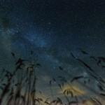 A nap képe – lenyűgöző fotó a Hortobágy feletti Tejútról