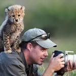 Állatok a kamerák mögött