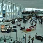 Páviánkoponyát és cápafogat is találtak csomagokban a Liszt Ferenc Repülőtéren