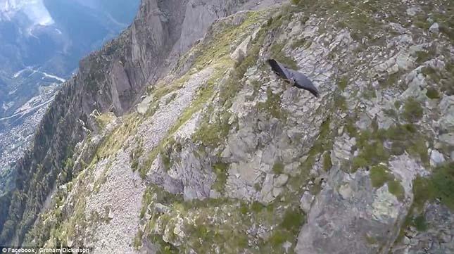 wingsuit-2